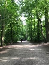 Isar trail