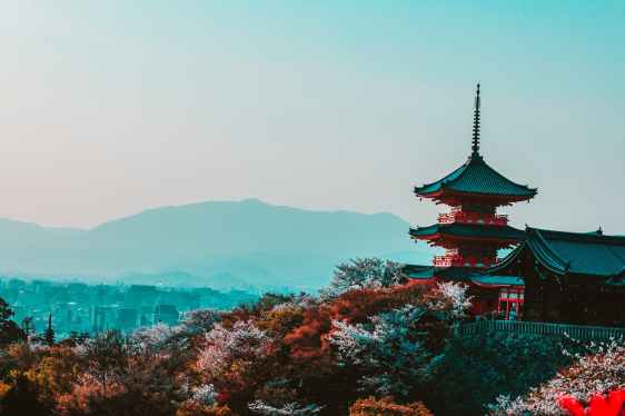 Japan. Photo by Belle Co on Pexels.com
