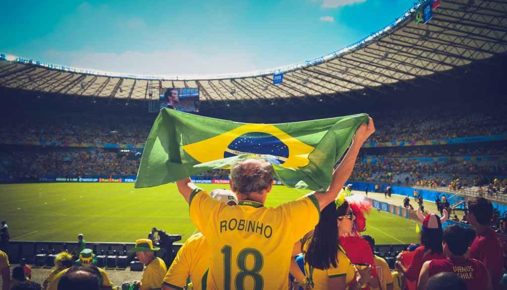 stadium flag holding cheering